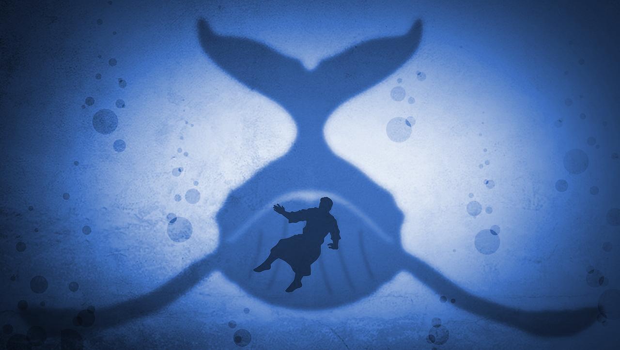 Jonah, part 1: See Jonah Run